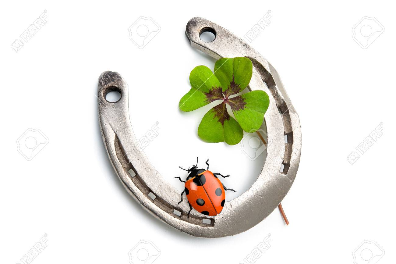 Horseshoes and clover with four leaf